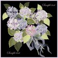 Greeting card with a bouquet of hydrangea. Royalty Free Stock Photos