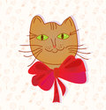 Greeting card with funny cat Royalty Free Stock Image