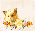 Greeting card with  ginger kitten Stock Photography
