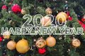 Greeting card with the inscription `Happy New Year 2020` on the background of a decorated Christmas tree
