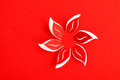 Greeting card paper flower red background Stock Photography