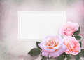 Greeting card with pink roses and card for text on a romantic vintage background Royalty Free Stock Photo