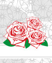 Greeting card with roses wedding Stock Images