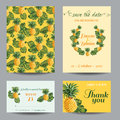 Greeting card set for wedding baby shower invitation congratulation vintage pineapples in vector Stock Photography