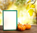 Greeting card with small pumpkins and on shinning fall background Stock Images