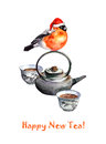 Greeting postcard with tea, teapot and bullfinch in red hat Royalty Free Stock Photo