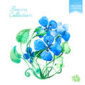 Greetings card template with blue summer flowers. Vector. Royalty Free Stock Photo