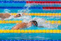 Gregorio paltrinieri italy barcelona august in action during barcelona fina world swimming championships on august in barcelona Stock Photo