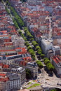 Grenoble aerial view Royalty Free Stock Photo