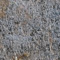 Grey Coarse Concrete Stone Wall Texture, Horizontal Macro Closeup Old Aged Weathered Detailed Natural ay Rustic Textured Grungy Royalty Free Stock Photo