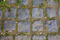 Grey Cobblestone walkway pattern Stock Photo