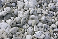 Grey coral stones. Royalty Free Stock Photos