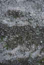 Grey ground texture with stones and sand Royalty Free Stock Photography