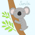 Grey koala bear on wood branch with green leaves