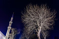 Grey leafless tree and a minaret of blue mosque at night round Stock Image