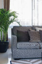 Grey modern sofa with pillows and black vase of plants Royalty Free Stock Photo