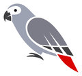 Grey parrot stylized vector illustration Stock Photography