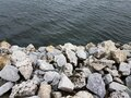 Grey rocks or stones and river or lake water Royalty Free Stock Photo