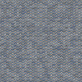 Grey seamless fish scale background close up Royalty Free Stock Photos