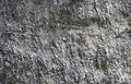 Grey stone texture Royalty Free Stock Photography
