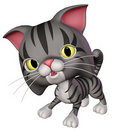 Grey toon cat Stock Photo