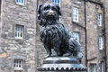 Greyfriars Bobby in horizontal picture