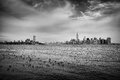 Greyscale Photography of Flock of Birds on Ocean Under Cloudy Sky Far from the City