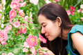 Gril smell the flower Royalty Free Stock Photos