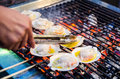 Grill clam with flour in the hot pan Royalty Free Stock Photography