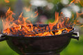 Grill in fames Royalty Free Stock Photo
