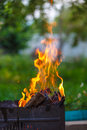 Grill in flames the close up Royalty Free Stock Photos