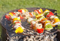 Grill in garden Royalty Free Stock Photos