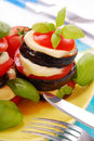 Grilled aubergine with tomato and mozzarella Royalty Free Stock Images