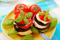 Grilled aubergine with tomato and mozzarella Royalty Free Stock Photo