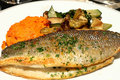 Grilled Branzino with basil, squash, and vegetables Royalty Free Stock Photo