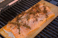 Grilled cedar plank salmon wild alaskan fillet on a on the grill it s seasoned with rosemary salt and pepper Stock Photography