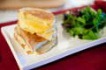 Grilled cheese with salad Royalty Free Stock Photography