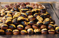 Grilled chestnuts Stock Images
