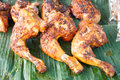 Grilled chicken on banana leaves thai style Stock Image