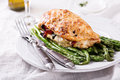 Grilled chicken breast stuffed with mozzarella Royalty Free Stock Photo