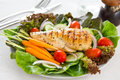 Grilled chicken and salad Royalty Free Stock Photo