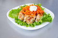 Grilled chicken on salad with carrots Royalty Free Stock Photos