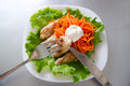 Grilled chicken on salad with carrots Stock Image