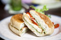 Grilled chicken sandwiches on white plate Royalty Free Stock Image
