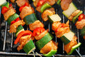 Grilled chicken and vegetable shashliks colorful on the summer picnic Stock Photography