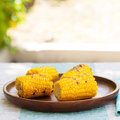 Grilled corn on the cob with salt and butter Royalty Free Stock Photo