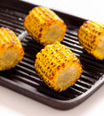 Grilled corn cobs Royalty Free Stock Photo