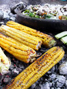 Grilled corn and vegetables Royalty Free Stock Photo