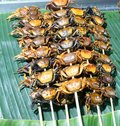 Grilled Crabs from Mae Khong river