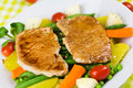 Grilled Cutlet Food , with colorful vegetable Royalty Free Stock Photos